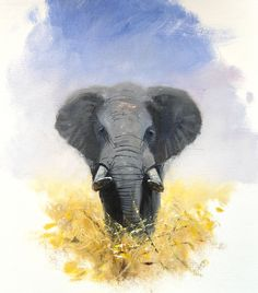 Oils instructional video lesson: African Elephant by Pip McGarry at ArtTutor.