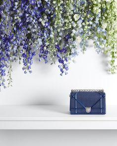 oh that Dior handbag...