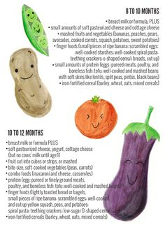 A Complete Baby Food Guide From Birth To 12 Months
