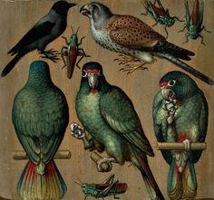 Undo the Dry Spell: Traditional Art 6  The Birds
