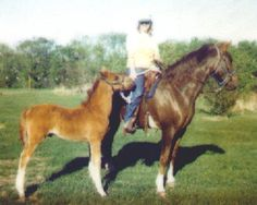 """When I got her she was bred, huge suprise to everyone except the sire of her foal and herself. His sire was """"Flying W Kit.""""  Named him """"Cactus Kit"""""""