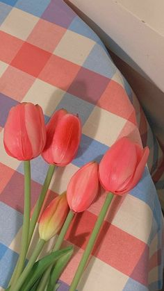 Cute Pastel Wallpaper, Soft Wallpaper, Flower Phone Wallpaper, Cute Patterns Wallpaper, Scenery Wallpaper, Aesthetic Pastel Wallpaper, Kawaii Wallpaper, Cute Wallpaper Backgrounds, Wallpaper Iphone Cute