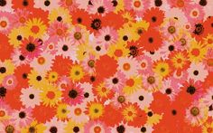 Psychedelic Pop Art Design for Desktop by Psychedelic Flowers Psychedelic, Daisy, Deviantart, Wallpaper, Flowers, Prints, Crop Pics, Nature Inspired