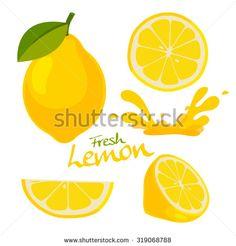 fresh lemon vector