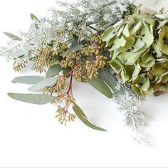 最近のオフィスにはとある撮影のために集められたお花がどっさりと置いてあることがありますその景色にいつもハッさせられるのでその中の一部をチラリとご紹介淡いグリーンが冬らしく感じられます  #北欧暮らしの道具店#花#お花#ザ花部#花のある暮らし#花のある生活#朝#あさ#朝時間 by hokuoh_kurashi
