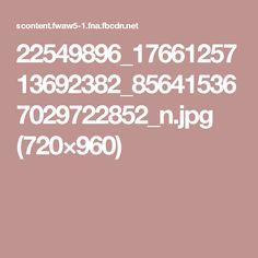 22549896_1766125713692382_856415367029722852_n.jpg (720×960)