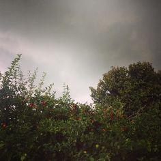 Quando o dia vira noite. #rain #thunder #raiosettovoes #riointerior #miguelpereira #errejota #instapic  #casanocampo #BalaiodeEstiloS