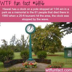 Tsunami Clock of Doom - WTF fun fact