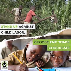 Over 2 million children still work in the West African #cocoa industry. Let's stand against child labor – REPIN to educate your friends why #FairTrade is so important this Valentine's Day & everyday: http://fairtrd.us/23VAJYT #ValentinesDay #education #chocolate #childlabor