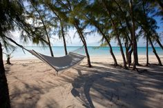 Tiamo Resort, South Andros - Bahamas.  One of my favorite places