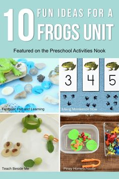 Try adding these great activities to your preschool frogs unit this spring! - My list of the most beautiful animals Frog Theme Preschool, Nature Based Preschool, Frog Activities, Animal Activities, Preschool At Home, Preschool Lessons, Montessori Activities, Montessori Homeschool, Homeschooling