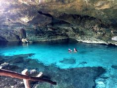 Dos Ojos Cenote in the Yucatan Peninsula. This is the entrance to the dark underground bat caves. Grab a guide and some snorkel gear and jump on in!