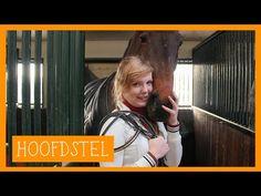 Hoofdstel in elkaar zetten | PaardenpraatTV - YouTube