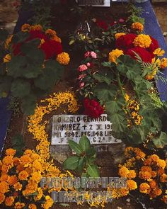 Decoration of the grave for Dia de los Muertos