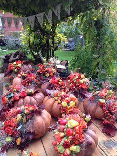 zucche floreali - pumpkins with flowers
