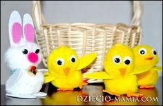 Easter bunny, chicks, wielkanocny zając i kurczaki, dziecio-mamia.com