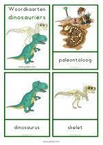 Woordkaarten Dinosauriërs – klein - woorden Daycare Crafts, Tot School, Prints, Kids, School Stuff, Preschool, Museum, Learning, Dinosaurs