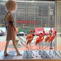 Window display with flamingos