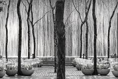 Manhattan, New York    ©Davide Boccardo  http://500px.com/evildave