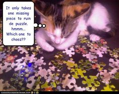 Funny Puzzles, Jigsaw Puzzles, Personalized Puzzles, Missing Piece, You Funny, Images Gif, Cat Memes, Cat Art, Photo Puzzle