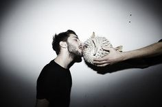 To be that puffer fish...