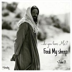 *Do you love Me? Feed My sheep.* Read John 21● Don't miss this weekend's service at Calvary Albuquerque where we learn how Jesus teaches us to feed His flocks. He is our Shepherd who will lead us to green pastures. #sheabq #calvaryabq #gettochurch #foodstagram #hashtag #prayforyourpastor #jesuskingofkings #sheministries