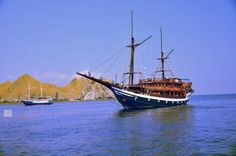 Sea safari boat #komodo islands diving trip #indonesia