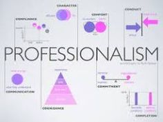 What does a professional workplace look like?