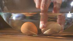 Test świeżości jaj