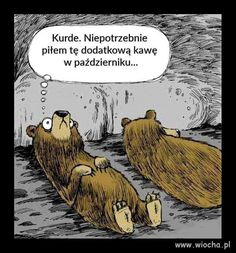 Animals coffee funny funny sayings picture pictures. hibernation - Animals coffee funny funny sayings picture pictures. Funny Cartoons, Funny Comics, Funny Jokes, Funny Sayings, Coffee Humor, Coffee Quotes, Funny Coffee, Coffee Coffee, Coffee Cups