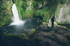 I love the people who do things like this when they get married :: Elopement is where it's at.
