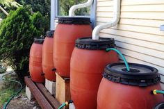Rain Barrels for Rain Water Harvesting: Rain water harvesting with a rain barrel is a smart, energy- and water-conserving way to keep your yard and garden green and flourishing all season long. It also makes sense to store rain water rather than send it into the ground. Rain water harvesting systems can be as simple as a big bucket under a gutter downspout, or as complex as a whole-house system for drinking water and other uses that requires multiple cisterns, filters and storage devices.