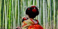 Los 10 bosques más mágicos del mundo: Bosque de bambú de Arashiyama, Japón