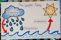 Teach the water cycle in fun ways. Here are 8 fast and fun water cycle resources and activities for the primary grades. Water Cycle Activities, Weather Activities, Kindergarten Activities, Science Activities, Science Experiments, Weather Kindergarten, Science Topics, Science Ideas, Science Fair