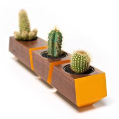 Wooden planters feature a pop of color.