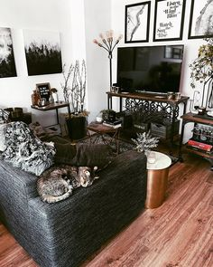 Rustic home decor with a witch aesthetic twist in my cozy living room styling. Rustic home deco Cozy Studio Apartment, Studio Apartment Decorating, Apartment Goals, Home Design, Interior Design, Cozy Living Rooms, Living Room Decor, Rustic Industrial Decor, Aesthetic Bedroom