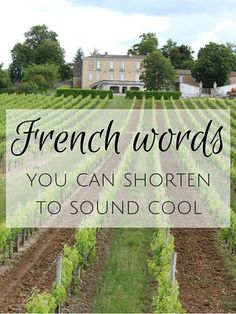 Oui In France Quick French lesson: Words you can shorten to sound cool French Class, French Lessons, Spanish Lessons, How To Speak French, Learn French, Teaching French, Teaching Spanish, Spanish Activities, French Practice
