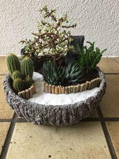 My first mini garden