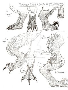 jiragon_foot_and_leg_sketches_by_rendragonclaw-d243tk1.jpg (JPEG Image, 777 × 1028 pixels)