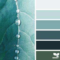 Nature Colors Palettes – Fubiz Media