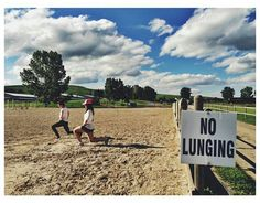 """Equestrian Problems: signs that say """"no lunging""""  Picture Courtesy of @/_quinnnn_ on instagram"""