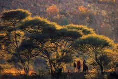 Mateya Safari, South Africa