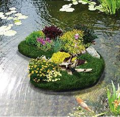 Pond on pinterest koi ponds koi and backyard ponds for Biofiltration pond