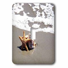 3dRose Print of Star Fish And Seashell On Beach, 2 Plug Outlet Cover