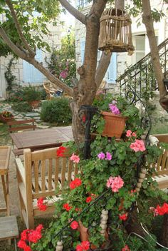 At #alacati #hotel you will be able to experience unforgettable vacations in #Turkey. http://www.incirliev.com/tr/