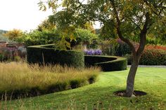Bury Court (Piet Oudolf)- forms and curves with simpler plantings