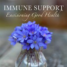 Immune Support guided imagery program $11.98
