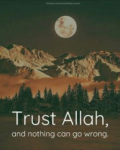 Trust allah, and nothing can go wrong. #islam #islamicquotes #allah