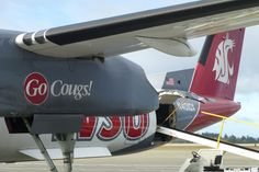 The Cougar Plane