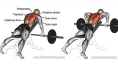 Back Barbell Workout Beast Mode Fitness Workouts, Gym Workout Tips, At Home Workouts, Fitness Tips, Fitness Motivation, Lifting Motivation, Health Fitness, Muscle Fitness, Mens Fitness